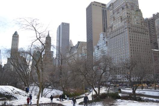 ny_central_park_snow